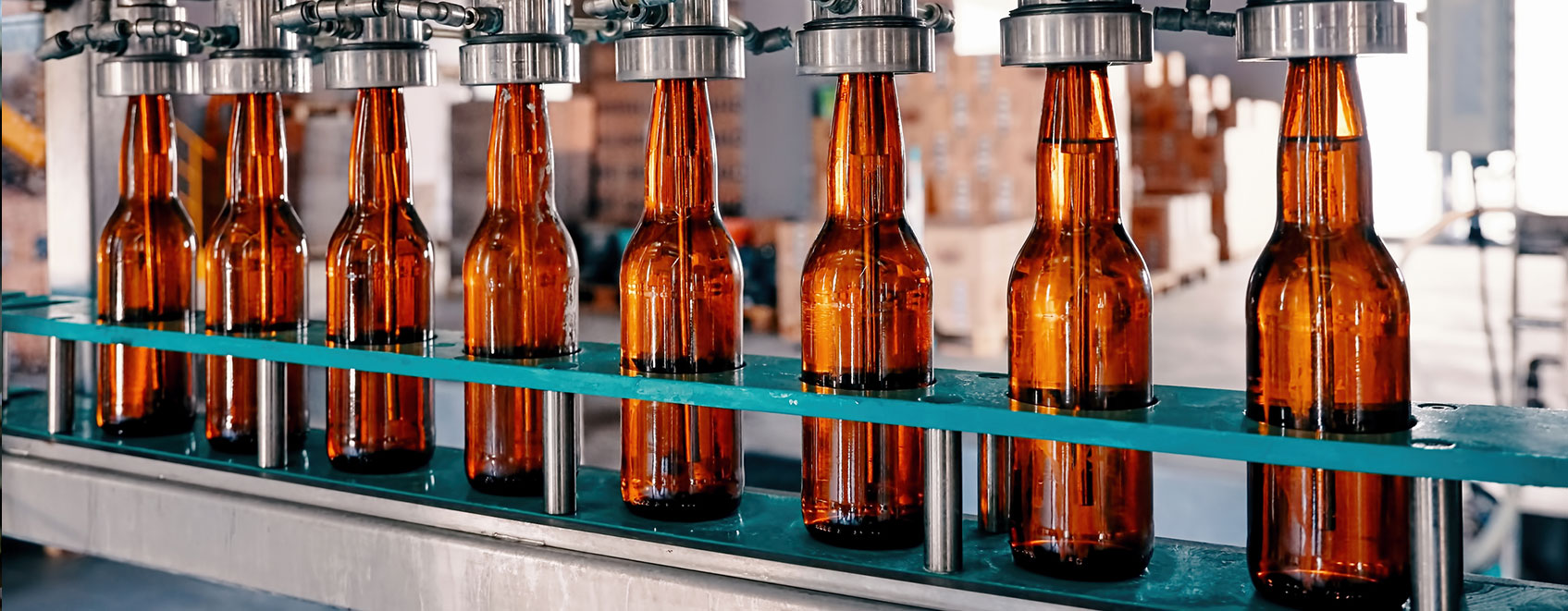 row of bottles on brewery assembly line