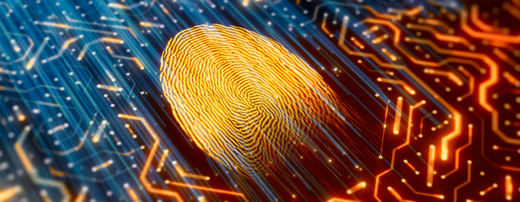 computer circuitboard, with glowing fingerprint on it